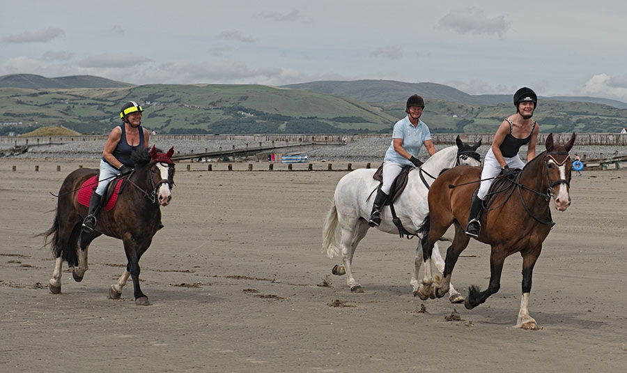 Horse riding on the beach at Borth